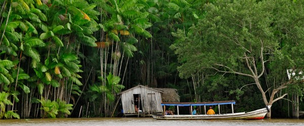 Ecoturismo in Xixuaú: Amazzonia