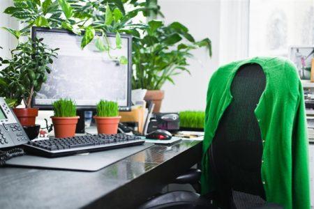 Come rendere l'ufficio ecologico in 3 semplici passi