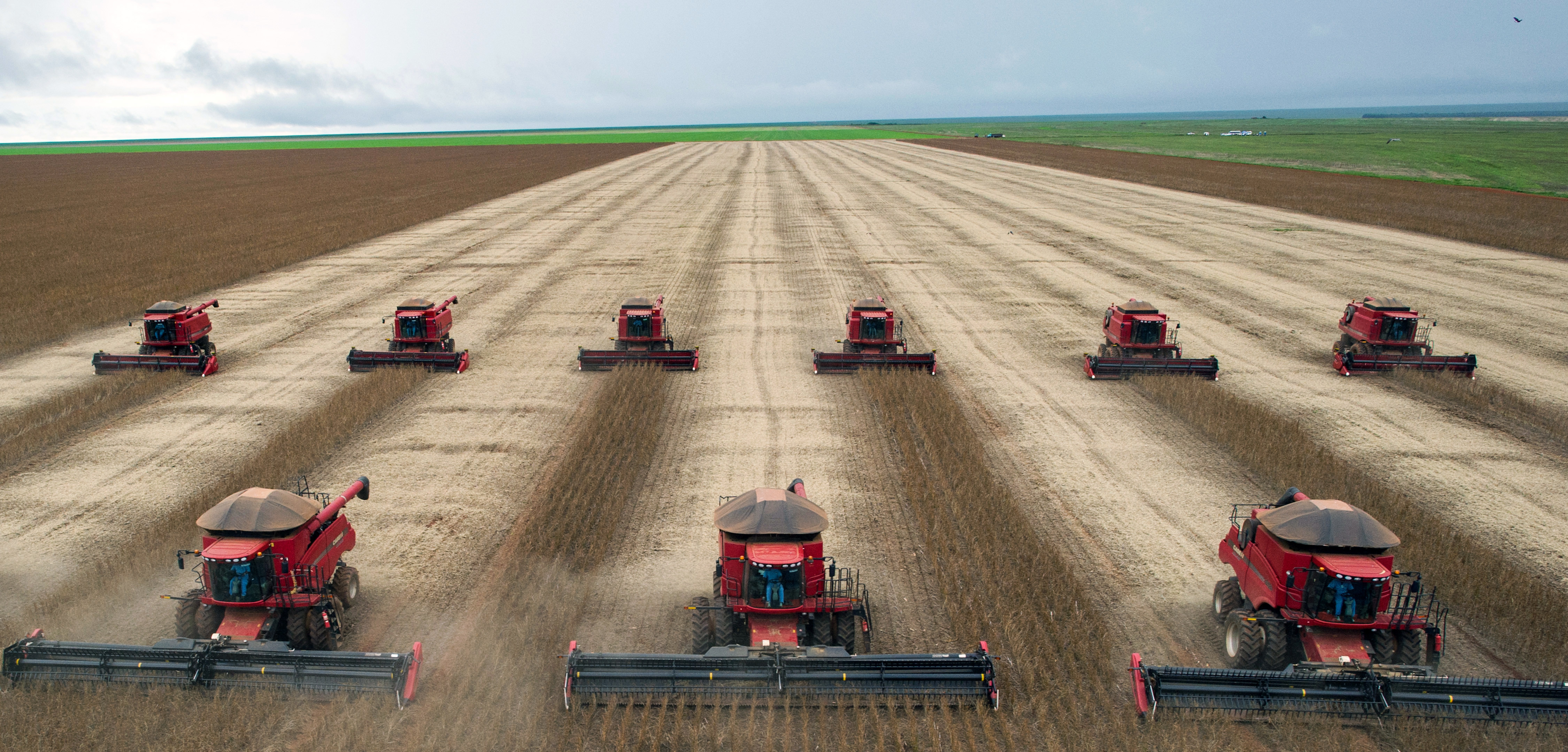 Analisi degli effetti dell'agricoltura intensiva
