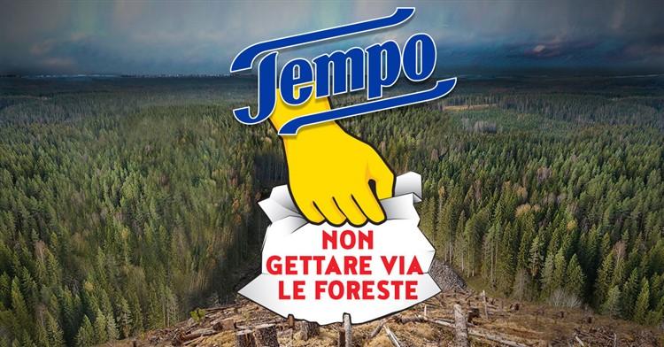 distruzione foreste causata dai fazzoletti