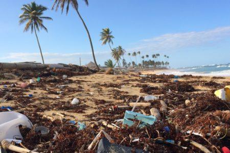 Come ridurre l'uso della plastica nella vita di ogni giorno?