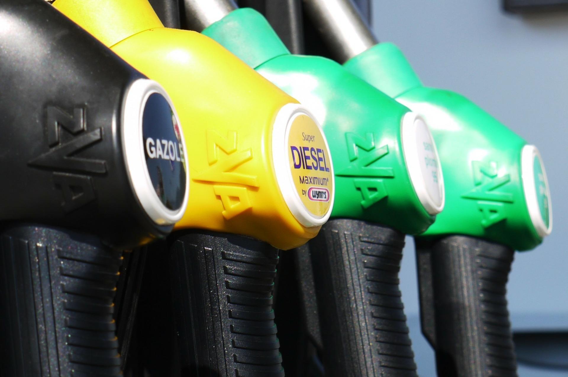 Olio di palma nei biocarburanti: il parere dei cittadini