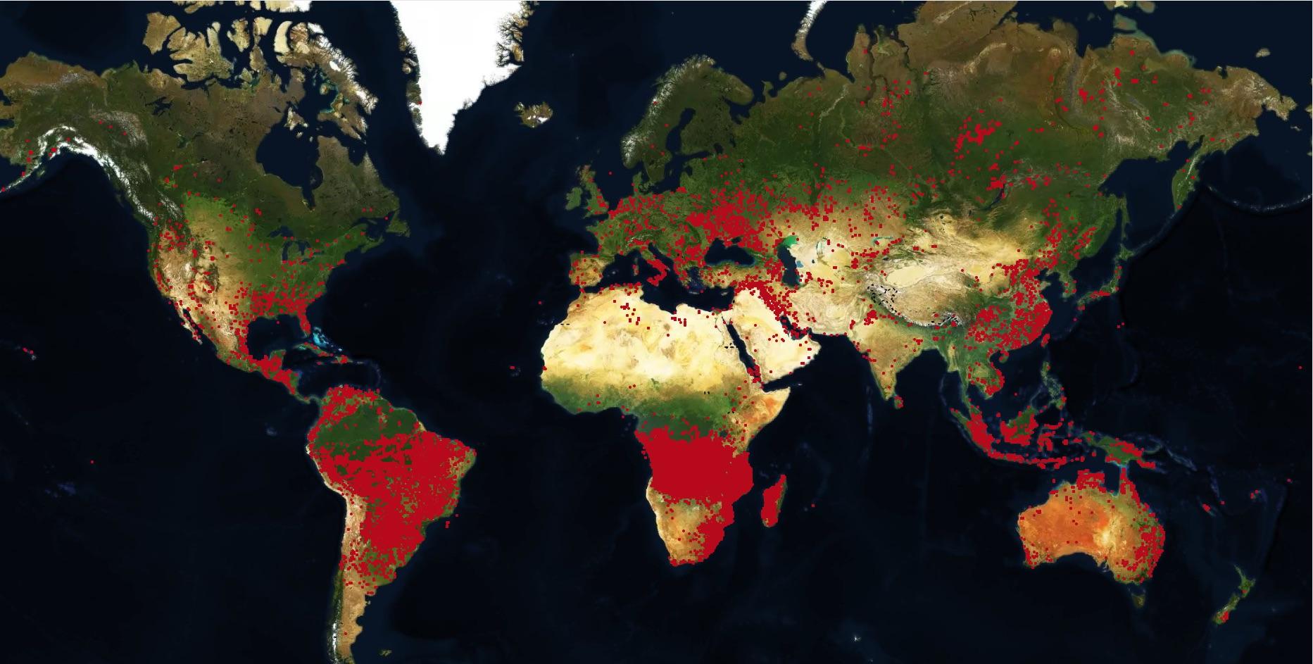 La mappa degli incendi nel mondo: ecco dove avvengono più frequentemente
