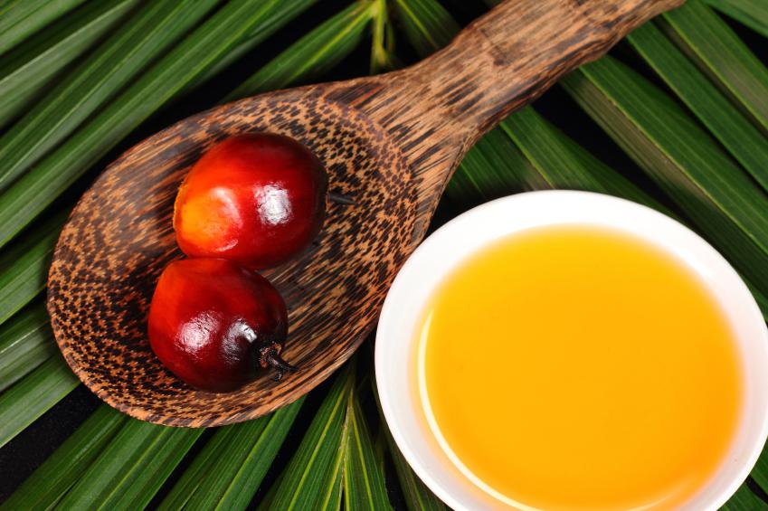 L'olio di palma: effetti su salute e ambiente
