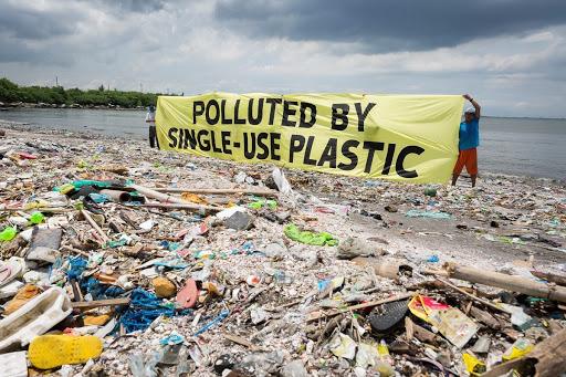 Via la plastica monouso dagli scaffali entro il 2021 in Europa