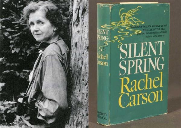 primavera silenziosa: libri su ambiente ed ecologia