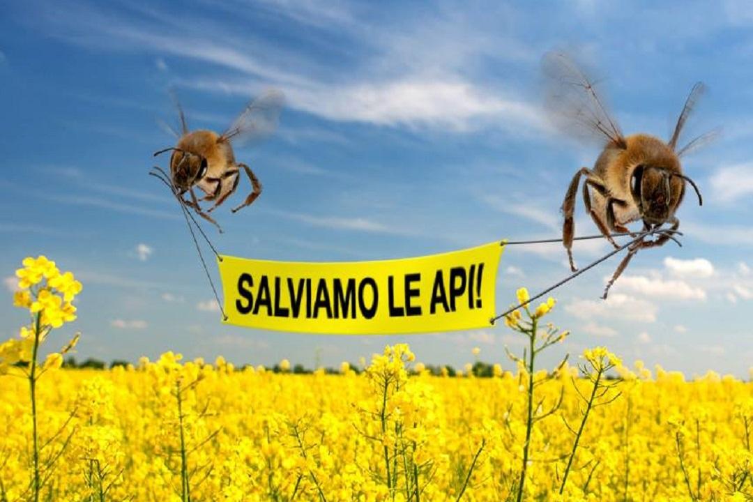rischio estinzione api