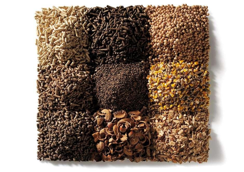 stufe biomassa riscaldare casa