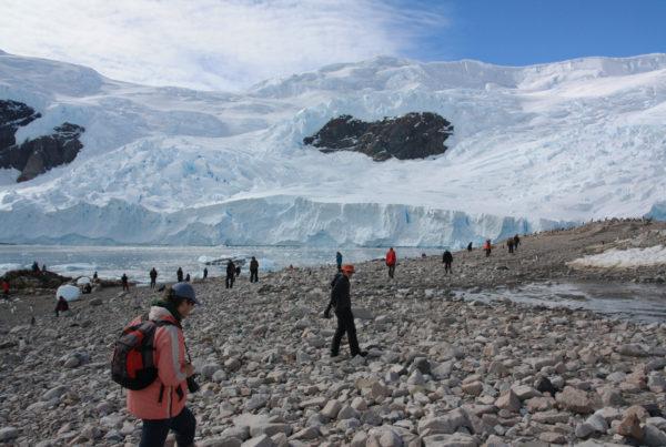 turismo antartide