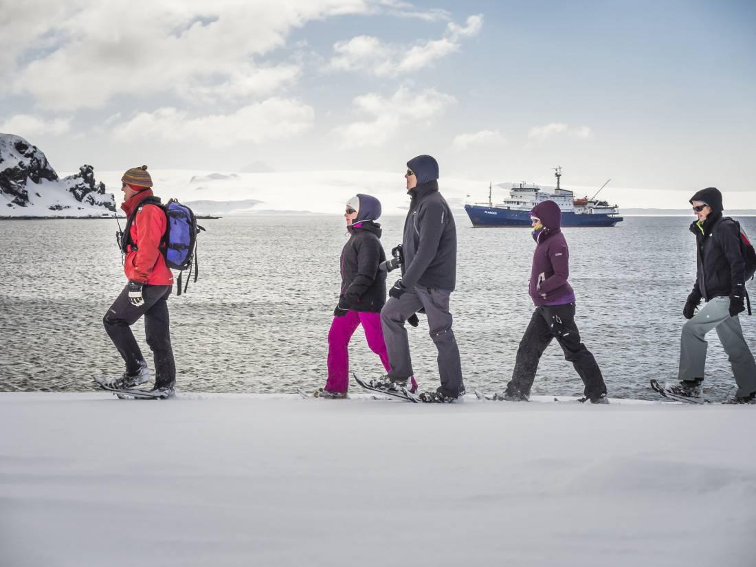 Viaggio al polo sud: tutto quello che c'è da sapere